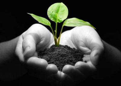 MakeMyTrip's GoGreen Drive Helps Plant One Million Trees