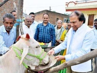 Dinesh Shahra Foundation conducts Gau Shakti Abhiyan in Nagpur