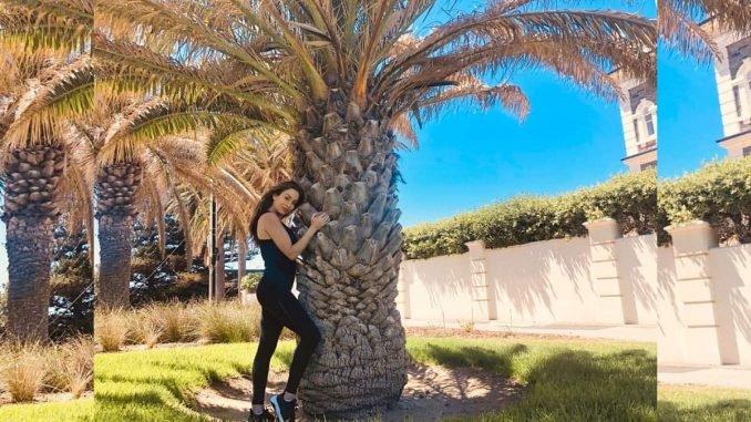 How Thunderpod & Lucinda Nicholas made Tree Hugging Viral - Digpu