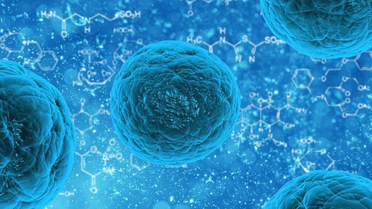 Study finds Immunotherapy after bladder cancer surgery may reduce recurrence 1 1